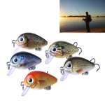 5 PCS 2.7cm/1.5g Luya Rock Fishing Lures Bait Bionic Kit with Plastic Box