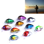 10 PCS 3cm/1.5g Luya Rock Fishing Lures Bait Bionic Kit with Plastic Box