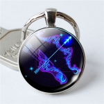 Zodiac Sign Keychain 12 Constellation Pendant Single Face Keyring(Sagittarius)