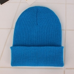 Simple Solid Color Warm Pullover Knit Cap for Men / Women(Blue )