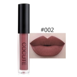 Matte Waterproof Makeup Lip Gloss Liquid Lip Stick Long Lasting Lipgloss(2)