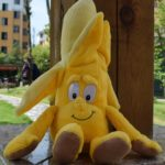Cute Cartoon Fruit Vegetable Plush Toy Doll Height :25-30cm(Cauliflower)