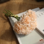 5 Heads Fake Flowers Artificial Flowers Peony Bouquet for Wedding and Home Decoration(Champagne)