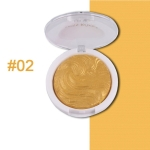 Highlighter Bronzer Brighten Powder for Face(02# Bird pattern)
