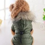 Pet Dog Coat Winter Warm Small Dog Clothes For Chihuahua Soft Fur Hood Puppy Jacket Clothing for Chihuahua Small Large Dogs, Size:L(Green)
