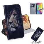 Lion Pattern Coloured Drawing Horizontal Flip Leather Case for Galaxy M20, with Holder & Card Slots & Wallet