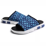 Breathable Mesh Lightweight and Comfortable Casual Sandals for Men (Color:Blue Size:43)