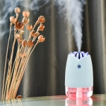 WT-H19 Rose Atomizing Humidifier with Colorful Night Lights, Water Tank Capacity: 230mL (Blue)