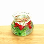 Dollhouse Miniature Transparent Glass Fish Tank Aquarium Toys(Red)