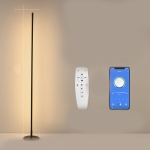 Minimalist Creative Bedroom Living Room Personality Atmosphere Light LED Floor Lamp(Stepless Dimming)