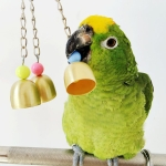 2 PCS Creative Pet Supplies Parrot Copper Bell Toy