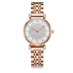 CAGARNY 6880 Fashion Life Waterproof Full Diamond Gold Steel Band Quartz Watch