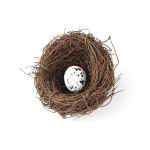 6cm Simulation Bird Nest + 1 PCS Bird Egg Holiday Decoration