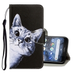For Nokia 2.2 3D Colored Drawing Horizontal Flip PU Leather Case with Holder & Card Slots & Wallet(Curious Cat)