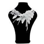 Lace Flower Embroidered Collar Fake Collar Clothing Accessories, Size: 31 x 30cm, Color:White
