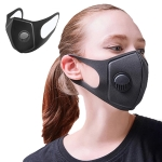 Dust-proof Breathable Wind-proof Fog-proof Disposable Mask with Breath-Valve Filter
