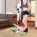 Silent Hydraulic Multifunctional Handrail Stepper Indoor Fitness Equipment