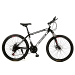 26 inch Dual Disc Brake Variable Speed Mountain Bicycle (Black)