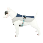 TH00204 Summer Pet Clothes Dog Cooling Vest Clothes, Size: S(Blue)