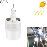 02-TD 60W 24 LEDs SMD 5730 Lighting Emergency Light Solar Rechargeable LED Bulb Light Camping Light with Battery Display