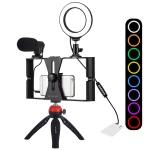 PULUZ 5 in 1 Vlogging Live Broadcast Smartphone Video Rig + 4.7 inch 12cm RGBW Ring LED Selfie Light + Microphone + Pocket Tripod Mount Kits with Cold Shoe Tripod Head(Red)