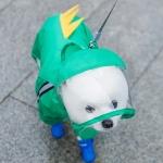 Pet Cartoon Pattern Waterproof All-inclusive Four-leg Raincoat, Size:M(Green Dinosaur)