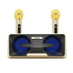 SDRD SD-301 2 in 1 Family KTV Portable Wireless Live Dual Microphone + Bluetooth Speaker(Gold)