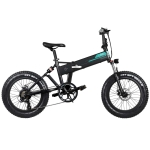 [EU Warehouse] Fiido M1 12.5Ah 250W Three-speed Variable Speed 20 inch Spoke Wheel Foldable Electric Bicycle, Cracking Speed Up To 30km/h(Black)