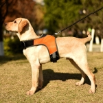 K-Shaped Luminous LED Harness for Pet Dogs without Rope, Size:L(Orange Without Lights)