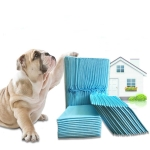 Pet Changing Pad Thickened Absorbent Dog Diapers, Specification: M : 50 PCS (45x60cm)