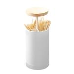 Dual-Purpose Toothpick Cotton Swab Storage Box Household Automatic Push-Type Portable Storage Box