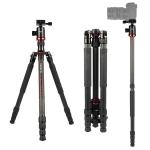 TRIOPO 888 Adjustable Portable Carbon Fiber Tripod with Q-2 Ball Head for SLR Camera, Pipe diameter: 28cm