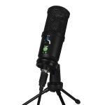 BM-66 Standard Version Heart-shaped Pointing USB Condenser Microphone Set