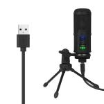 BM-65 Standard Version Heart-shaped Pointing USB Condenser Microphone Set
